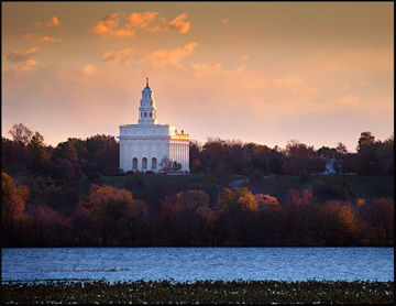Picture of Nauvoo Miracle Of The Quail