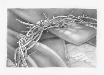 Picture of Crown Of Thorns Original Charcoal on Paper 12 X 8