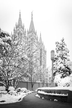 Picture of Salt Lake White Christmas