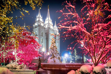 Picture of Salt Lake City Christmas Lights