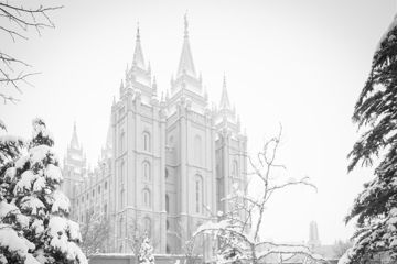 Picture of Salt Lake City High Key Snow