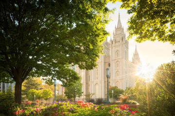 Picture of Salt Lake - The Lord is My Light