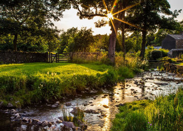 Picture of Plate 4 - Downham Spring Brook at Sunset