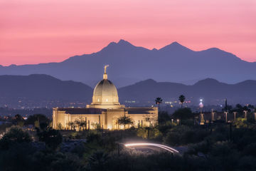 Picture of Tucson Purple Mountain Majesty