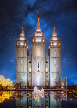 Picture of Salt Lake Starry Night Nativity