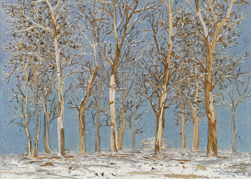 Picture of Winter Woods