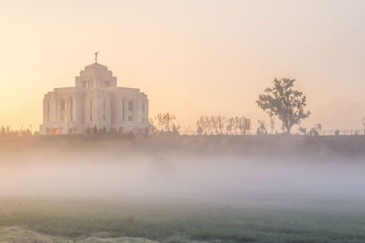 Picture of Meridian Morning Fog