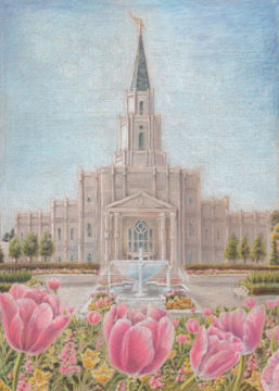 houston temple sacred haven by pris hardy
