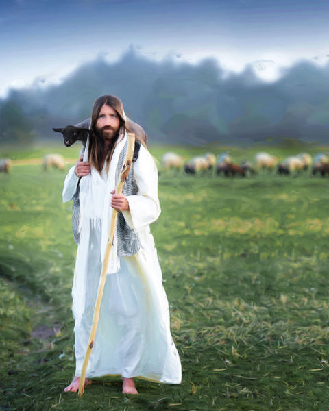 the shepherd and bishop of souls by haley miller
