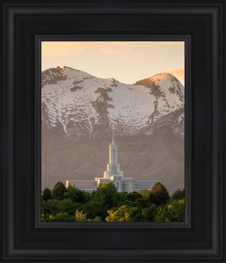 Mt. Timpanogos You're not Alone