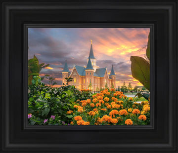 Provo City Center Temple Orange Flowers