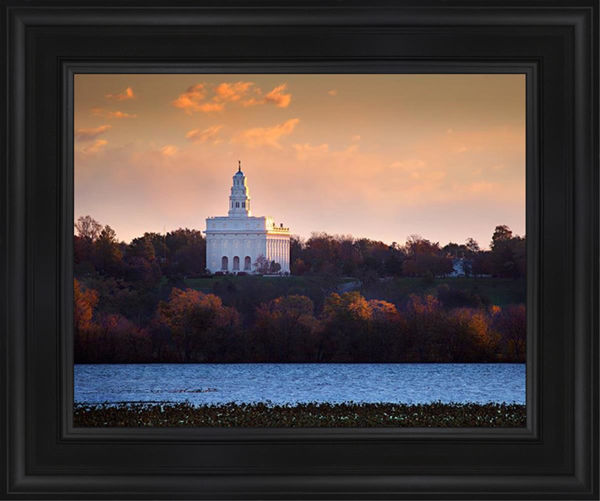 Nauvoo Miracle Of The Quail