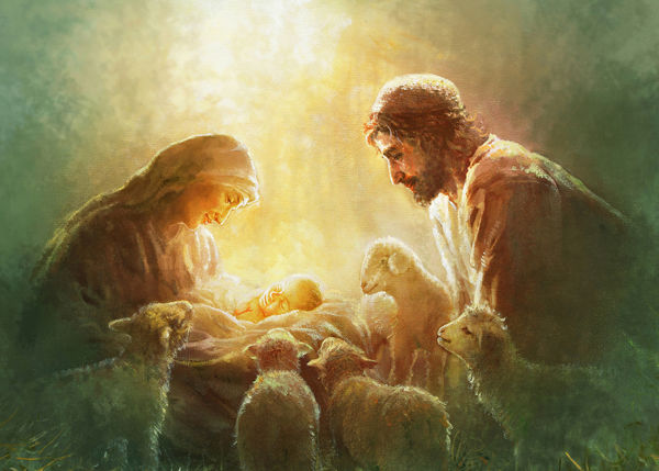 Immanuel Christmas Card 100 pack